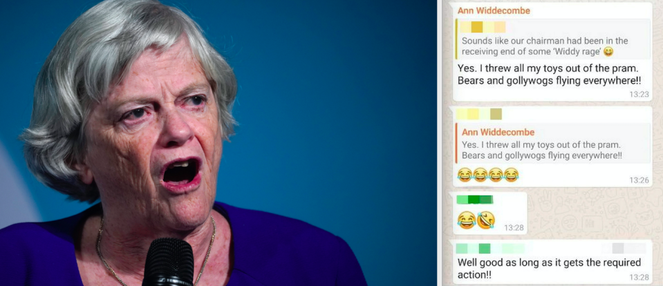 Ann Widdecombe used the word 'golliwog' in a WhatsApp group (Getty/SWNS)