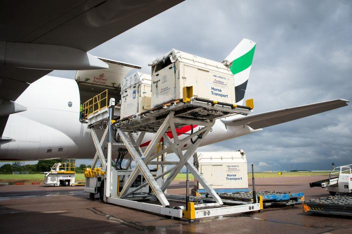 This image released on Monday, Aug. 1, 2016, shows horses bound for the Rio 2016 Olympic Games being loaded on to an Emirates SkyCargo Boeing 777-F at London Stansted Airport. On the flight were 34 horses from 10 of the nations competing in Equestrian at Rio 2016. For further information visit: http://apassignments.com/newsaktuell. (FEI/Jon Stroud Media via AP Images)