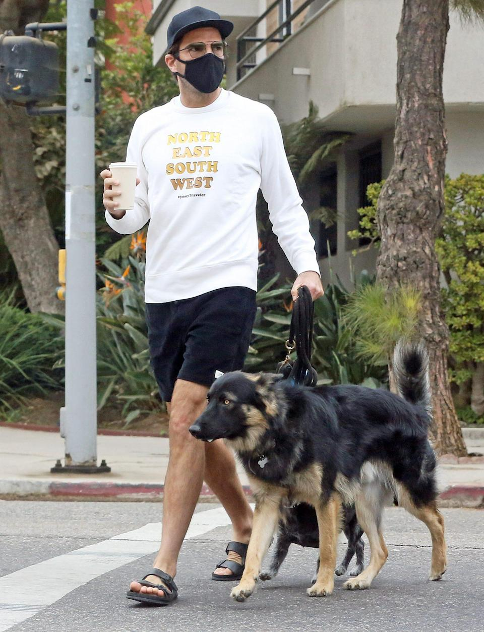 <p>Zachary Quinto takes his dogs for a walk in the park on Wednesday in L.A.</p>