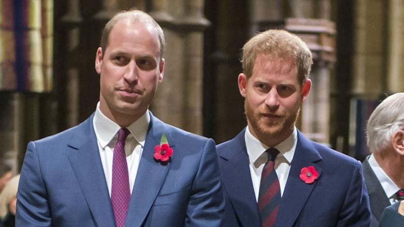 Prince Harry and Prince William Release Joint Statement to Slam False Report Amid Drama