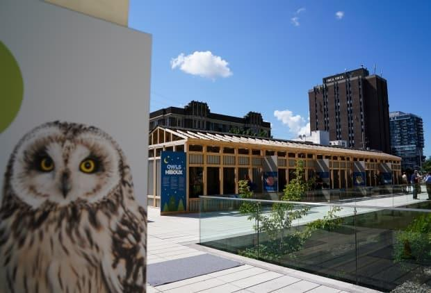 Enclosures holding a great horned owl, a barn owl, two snowy owls, a Eurasian eagle-owl and a bald eagle for an exhibit titled Owls Rendez-vous are seen on the plaza at the Canadian Museum of Nature in Ottawa on Wednesday, July 28, 2021.  The museum has reopened with a 'timed ticketing' system in place. (Sean Kilpatrick/The Canadian Press - image credit)