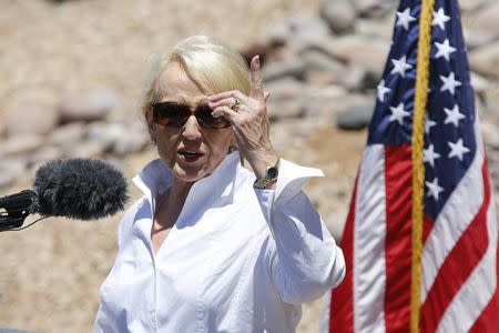 Arizona Governor Jan Brewer speaks to the media at the Nogales Border Patrol Station in Nogales, Arizona June 25, 2014. REUTERS/Nancy Wiechec