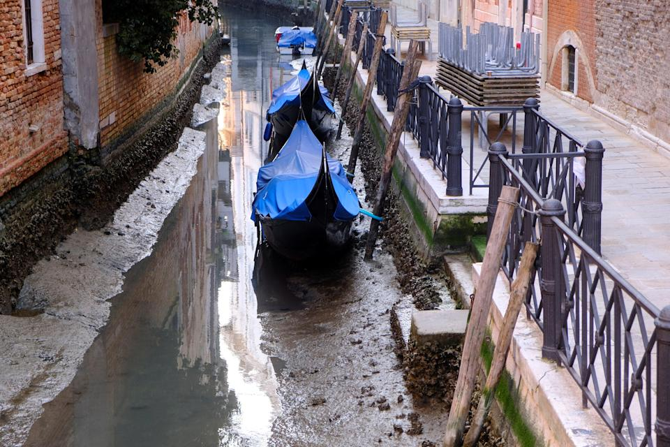 <p>Gondolas are seen in a canal during an exceptionally low tide in the lagoon city of Venice</p> (Reuters)