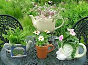 """<div class=""""caption-credit"""">Photo by: Nancy Ondra</div><div class=""""caption-title"""">Time for Tea</div>It's easy to get carried away collecting teapots and teacups to the point that you run out of room to display them indoors. Why not turn some of them into pretty planters? It's fine if they're chipped, or if their handles or lids are missing. Metal teakettles and tea tins can be delightful additions to the grouping."""