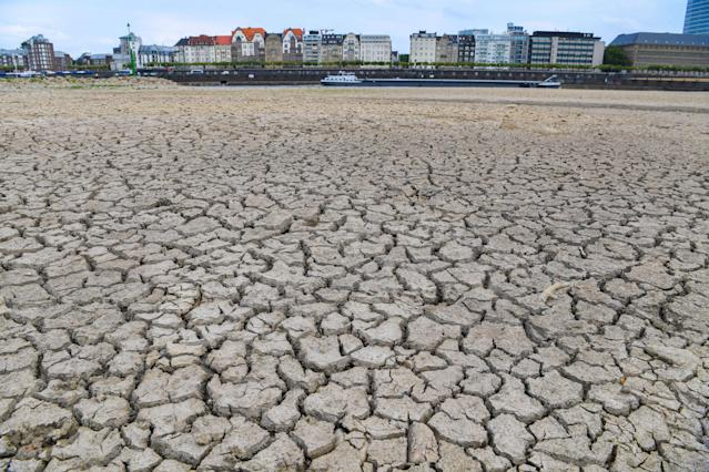<p>The river bed of the Rhine is dried on Aug. 8, 2018 in Duesseldorf, western Germany, as the heatwave goes on. (Photo: Patrik Stollarz/AFP/Getty Images) </p>