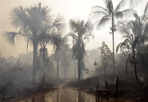 The Amazon forest burns next to the city of Mandaquiri, November 28, 2009.