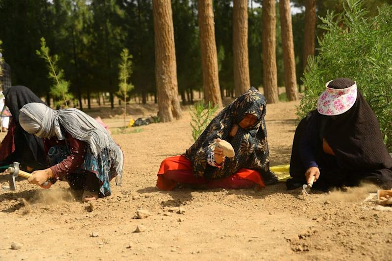 Afghan women work the soil at a park in the city of Herat on June 2, 2018. According to the World Bank, 19 percent of Afghan women had official jobs in 2017.