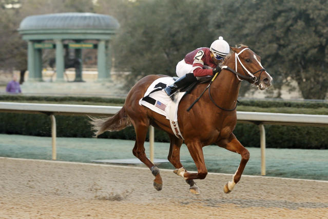 Tapiture and jockey Ricardo Santana Jr., run to the finish line to win the $300,000 Southwest Stakes horse race at Oaklawn Park in Hot Springs, Ark., Monday, Feb. 17, 2014. (AP Photo/Danny Johnston)