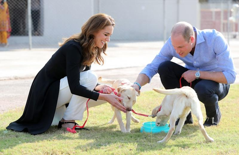 Kate Middleton and Prince William visit the Army Canine Centre in Pakistan.