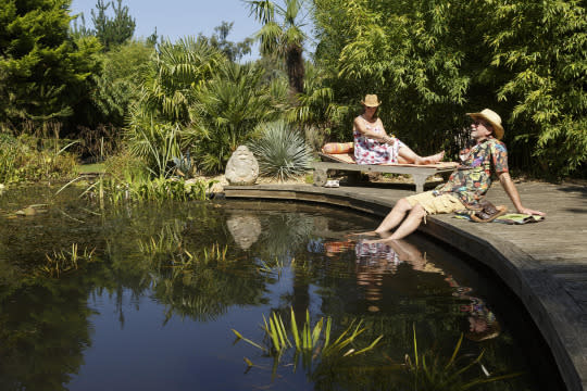The Couple Who Haven T Gone Abroad For 22 Years Because They Built A 20 000 Oasis In Their