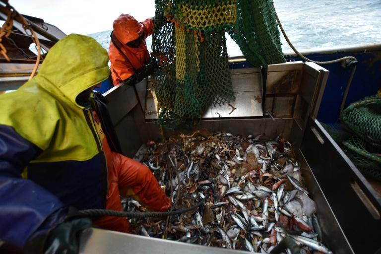 EU fishermen have voiced fears that losing any access to the rich UK fishing waters would threaten their livelihoods