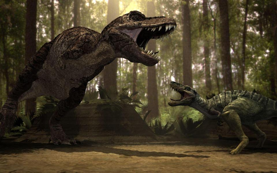Tyrannosaurus (left) and a Nanotyrranus engaged in battle - Television Stills