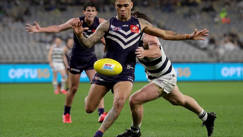 AFL DOCKERS CATS