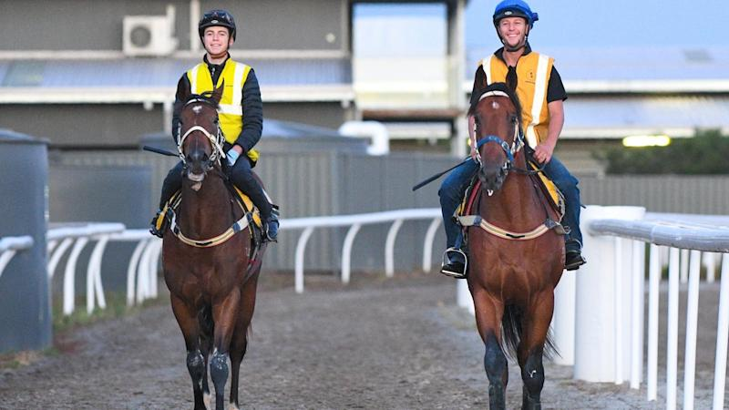 Gallops Virus Trials