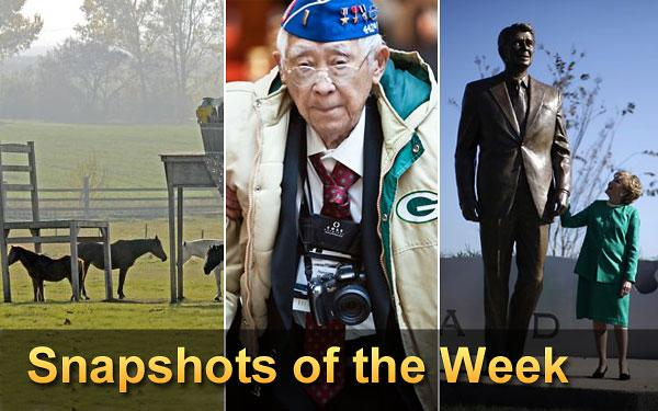 Snapshots of the Week