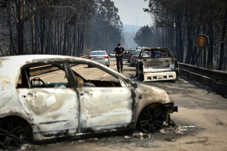 More than 50 people have died and dozens more have been injured in the Portugal wildfires, some while trying to drive to safety
