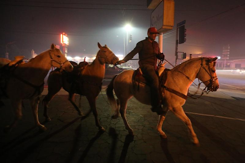 Horses are led from danger in Shadow Hills.