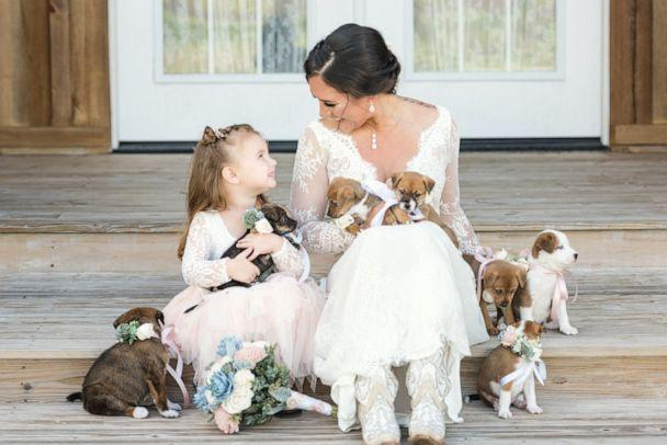 PHOTO: Andee Krasinski said that the couple's three-year-old daughter Carter loved playing with the puppies. (Cami Zi Photography)