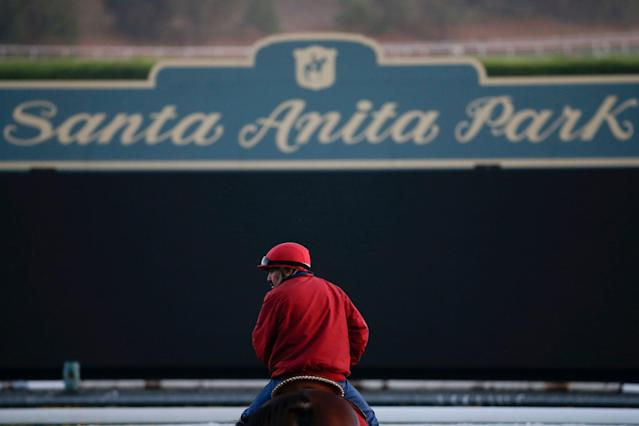 Two more horses died at the famed Santa Anita racetrack in Southern California last weekend, marking the 25th equine death at the track this season. (AP)