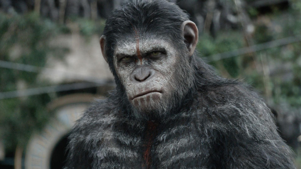 'Dawn of the Planet of the Apes'. (Credit: Fox)
