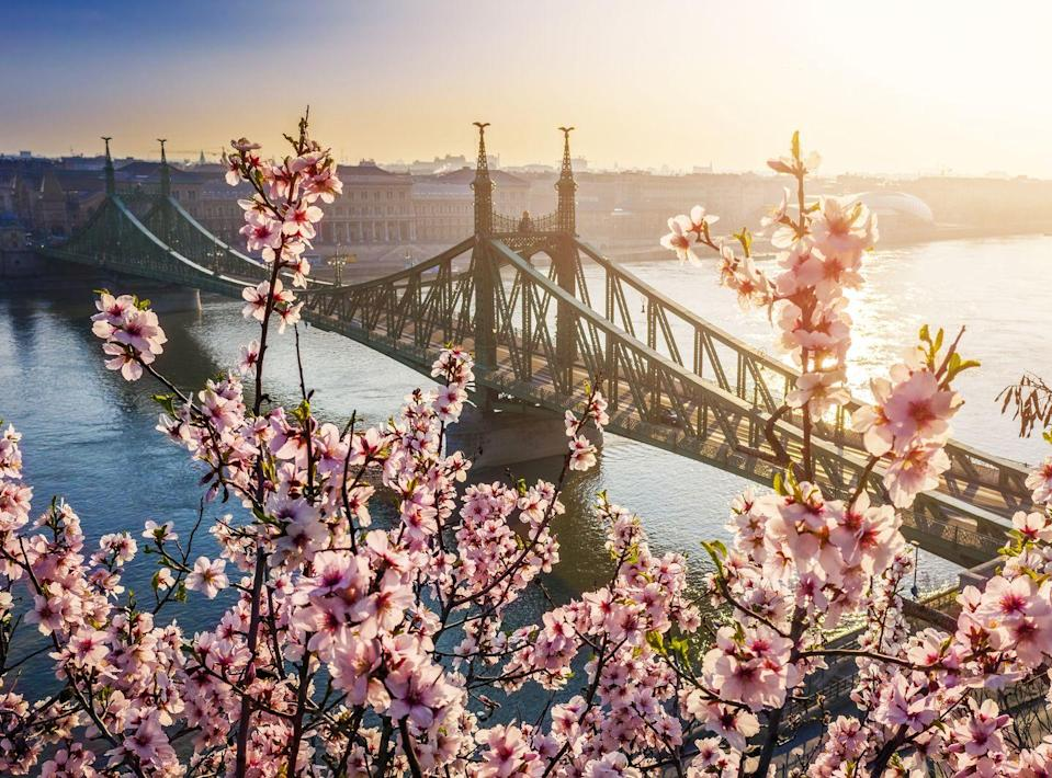 """<p><a class=""""link rapid-noclick-resp"""" href=""""https://www.goodhousekeepingholidays.com/tours/danube-cruise-ruth-eamonn"""" rel=""""nofollow noopener"""" target=""""_blank"""" data-ylk=""""slk:CRUISE TO BUDAPEST NEXT SPRING"""">CRUISE TO BUDAPEST NEXT SPRING </a></p>"""
