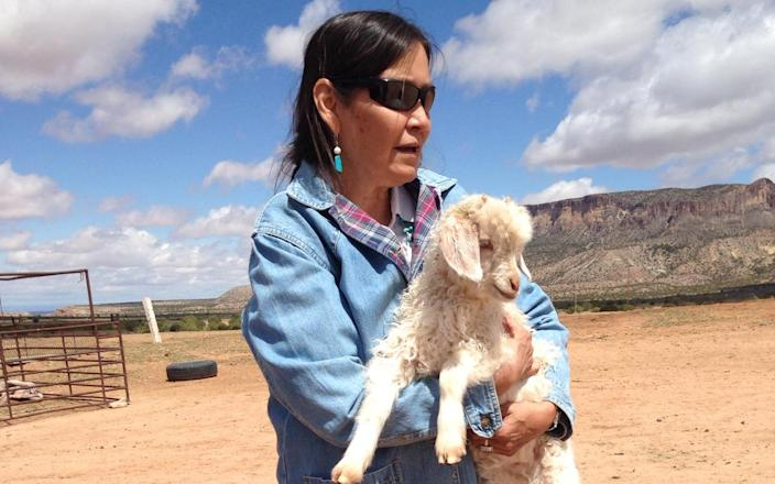Joyce Begay-Foss stands with a kid goat while purchasing mohair for her weavings. (Photo: Courtesy of Joyce Begay-Foss)