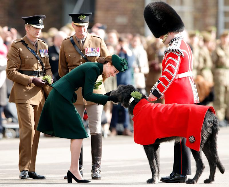 The Duchess of Cambridge presents Irish Wolfhound Domhnall, regimental mascot of the Irish Guards, with a sprig of shamrock during the St Patrick's Day Parade on Sunday. (Photo: Max Mumby/Indigo via Getty Images)