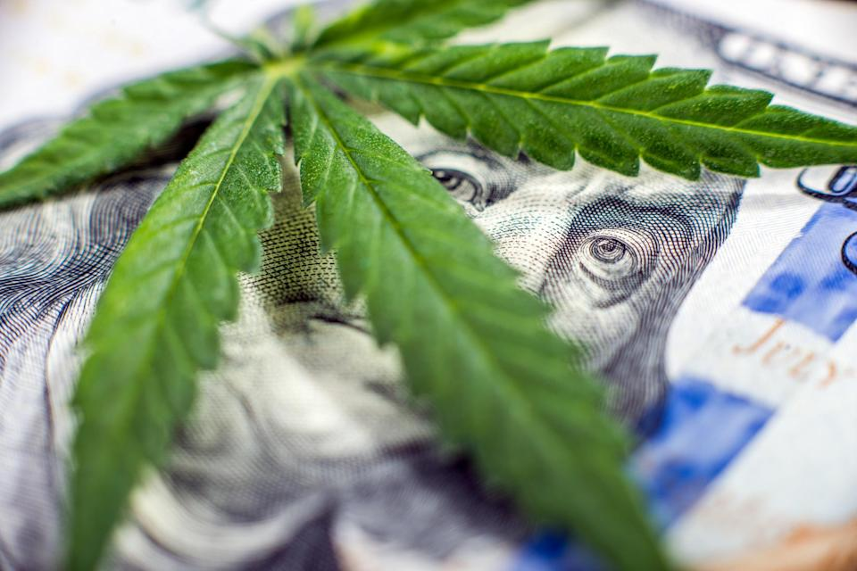 A cannabis leaf laid atop a hundred dollar bill, with Ben Franklin's eyes peering out between the leaves.