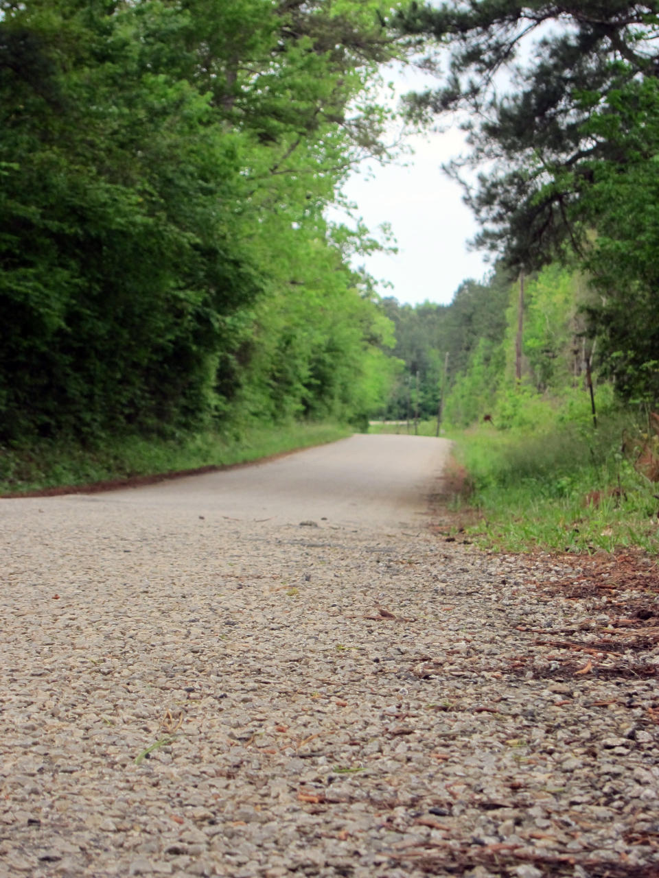 This April 12, 2019, photo shows a section of Huff Creek Road in Jasper, Texas, where James Byrd Jr., who was black, was dragged to death by three white men in what is considered one of the most gruesome hate crime murders in recent Texas history. John William King, the convicted ringleader of Byrd's death, is set to be executed on Wednesday, April. 24, 2019. (AP Photo/Juan Lozano)