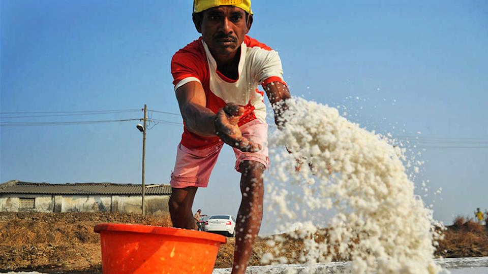 A worker at a salt pan. image credit: Uday Tadphale.