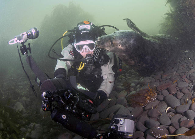 <p>As the trip came to an end, one curious seal was keen to keep a memento and tried to swipe her camera. (Photo: Frogfish Photography/Caters News) </p>