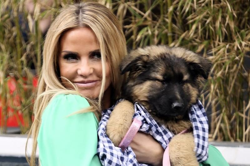 New puppy: Katie Price has reportedly adopted a new dog after losing Queenie in February: Rex
