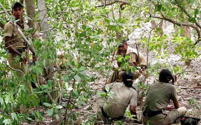 Chhattisgarh: Canadian national detained by Maoists released