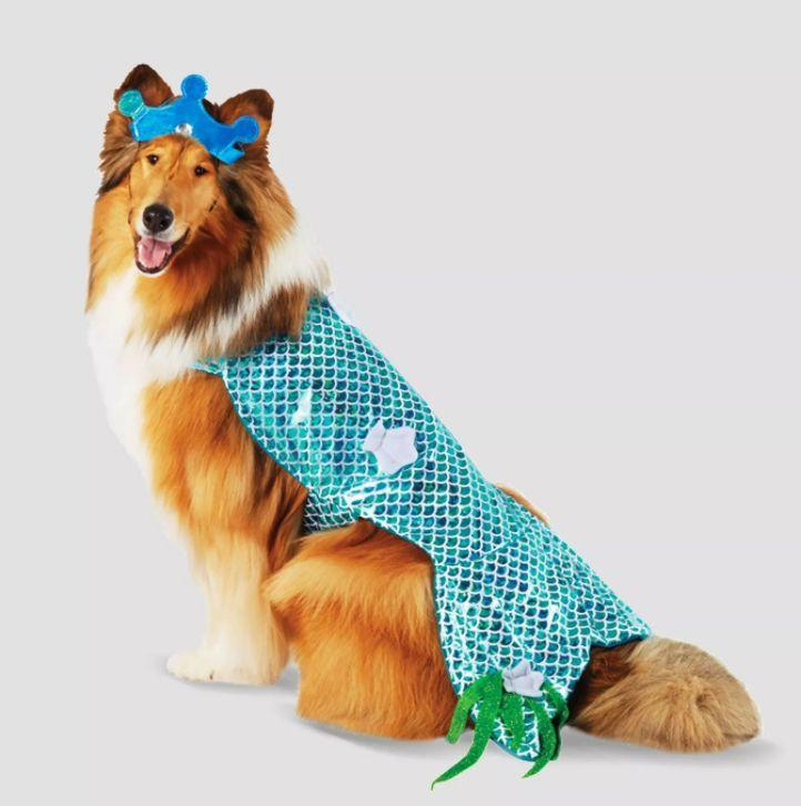 """Get this <a href=""""https://goto.target.com/16eQB"""" target=""""_blank"""" rel=""""noopener noreferrer"""">Mermaid Halloween Costume for $13</a> at Target.It's available in sizes XS-XL and has a crown."""