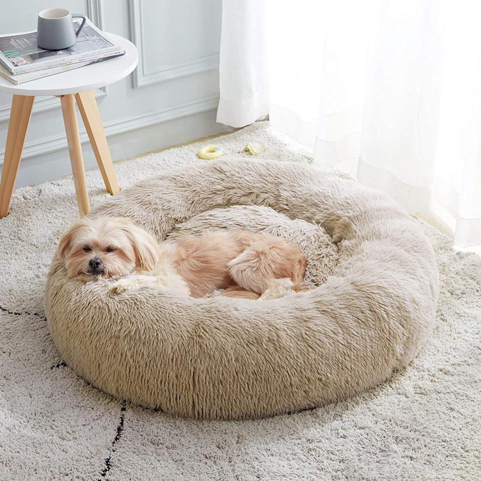 The Anti-Anxiety Donut Dog Cuddler Bed, $47.51