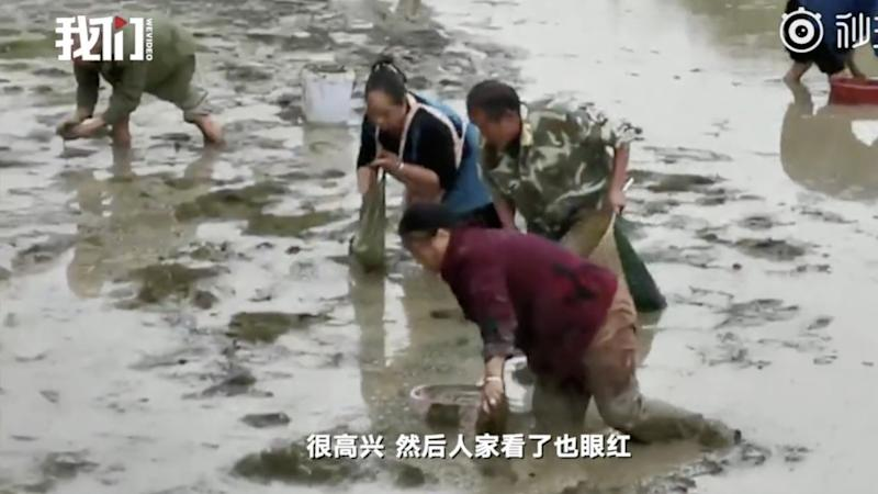 Chinese fish farmer complains that locals keep stealing his stocks, but police will not make the catch