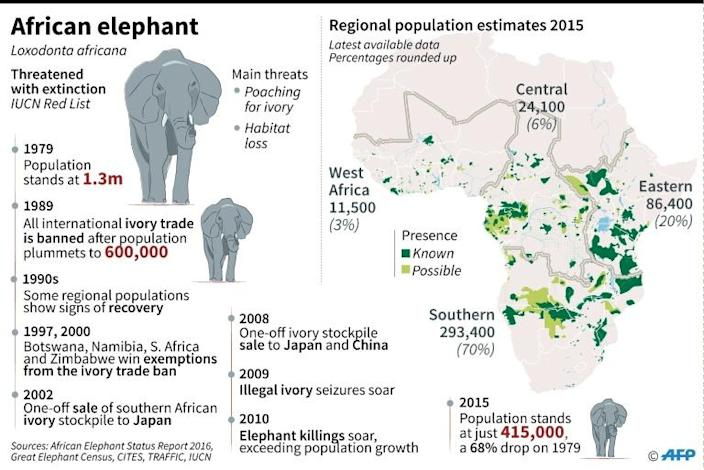 Map of Africa's elephant populations, with chronology of species protection measures, the ivory trade ban and poaching (AFP Photo/Kun TIAN)