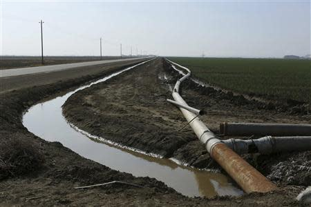 An irrigation pipe is seen at a farm near Cantua Creek, California in this February 14, 2014 file photo. REUTERS/Robert Galbraith