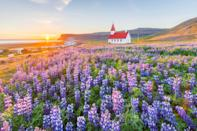 """Only about 14 percent of visitors to Iceland ever get to this large peninsula in the northwestern part of the country, which makes it a fitting destination for those looking to escape the (relative) hustle and bustle of <a href=""""https://www.cntraveler.com/story/best-things-to-do-in-iceland?mbid=synd_yahoo_rss"""" rel=""""nofollow noopener"""" target=""""_blank"""" data-ylk=""""slk:Reykjavik"""" class=""""link rapid-noclick-resp"""">Reykjavik</a>. Home to some of Iceland's most dramatic landscapes, diverse wildlife, and charming beach towns (like Breiðavík, pictured), the Westfjords are more inaccessible than other parts of the country, but are well worth the trip."""