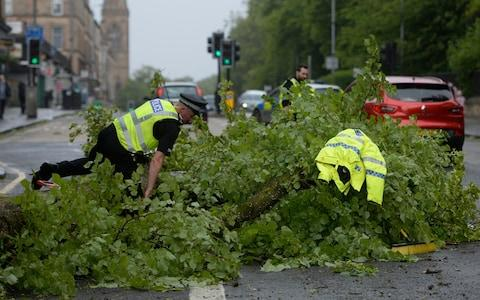 Police officers in the West End of Glasgow deal with a fallen tree - Credit: SWNS.com