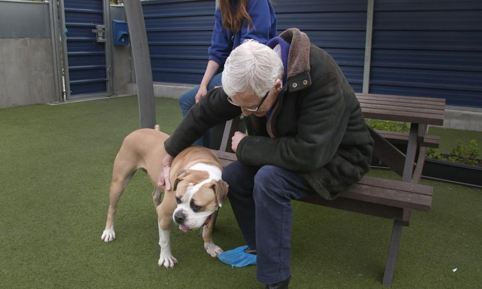 Paul O'Grady with an American Bulldog called Sky heartbroken to leave her owner. (ITV)