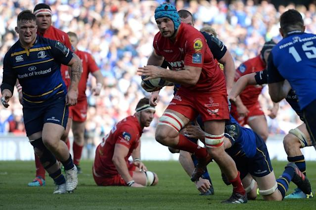 It was Scarlets' first European semi-final since 2007 and despite their 38-16 thumping by Leinster, coach Wayne Pivac backed them to mount another strong challenge next season (AFP Photo/Barry CRONIN)