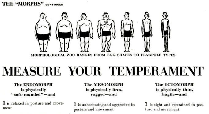 Illustration showing 7 men of various somatotypes as understood in 1951, with the heading Measure Your Temperament