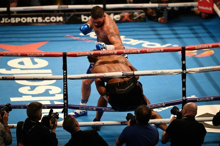 Tony Bellew, the WBC world cruiserweight champion, stepped up a division to stop David Haye in the 11th round after knocking him through the ropes