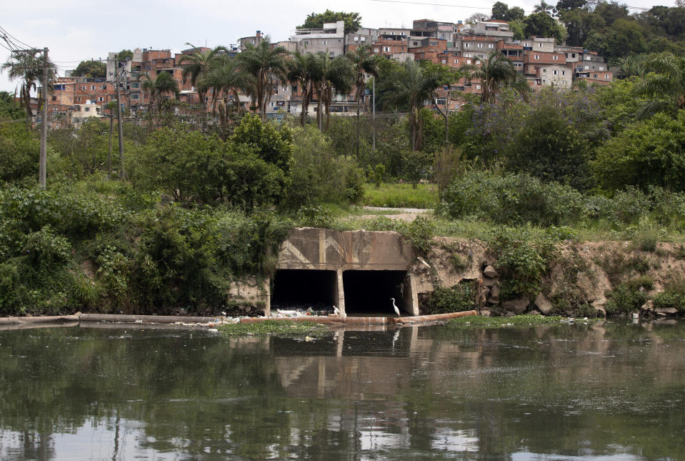 Birds perch near a sewage canal that flows into the Pinheiros River in Sao Paulo, Brazil, Thursday, Oct. 22, 2020. Affected by domestic sewage and solid wastes discharges for years, Sao Paulo's state government is again trying to clean the Pinheiros River, considered one of the most polluted in Brazil. (AP Photo/Andre Penner)