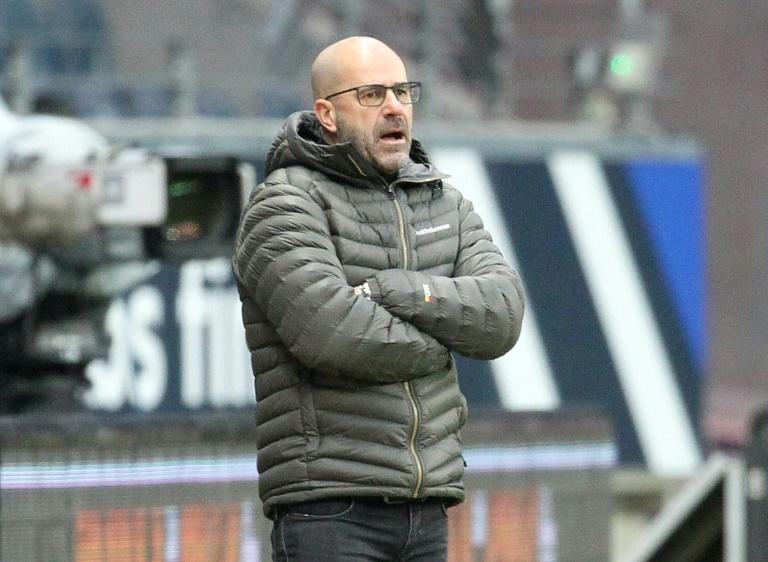 Leverkusen head coach Peter Bosz shows his frustration during their defeat at Eintracht Frankfurt