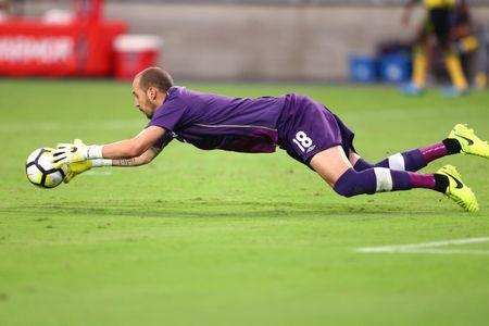 Jul 20, 2017; Glendale, AZ, USA; Canada goalkeeper Milan Borjan makes a diving stop on a shot against Jamaica during the quarterfinals of the CONCACAF Gold Cup at University of Phoenix Stadium. Mandatory Credit: Mark J. Rebilas-USA TODAY Sports