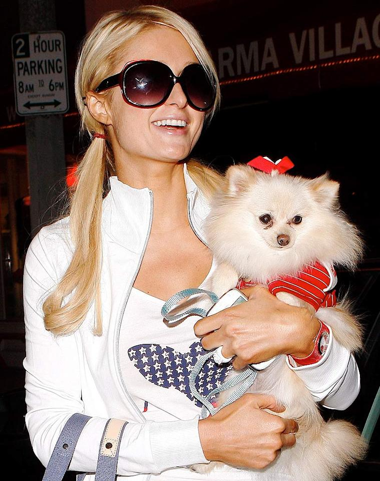 "The Hollywood Gossip reports that while Paris Hilton was at a couple of events in Madrid last weekend, she ""appeared to be sporting a baby bump."" The site also notes how for her Christmas card this year, Paris ""has her legs raised over the bottom of the belly, almost like she's hiding something."" For the exclusive dish on Paris' baby news, read what her rep confirmed to <a href=""http://www.gossipcop.com/paris-hilton-pregnant-baby-bump-expecting-pregnancy/"" target=""new"">Gossip Cop</a>. ICE-BB-IVON-MBF-Maciel/<a href=""http://www.x17online.com"" target=""new"">X17 Online</a> - February 2, 2010"