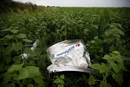FILE PHOTO: Debris from the Malaysia Airlines Boeing 777 which crashed over Ukraine lies on the ground near the village of Rozsypne in the Donetsk region