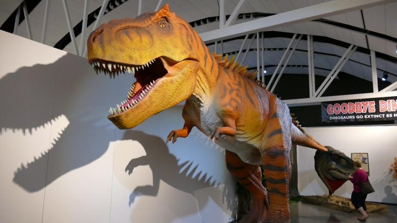 Farting, peeing dinosaurs come to the Manitoba Museum